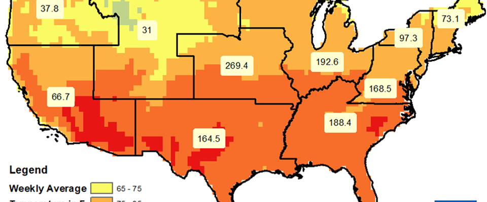 Weekly Temperatures (Max) and Heat Related Illnesses (June 17-23, 2018)